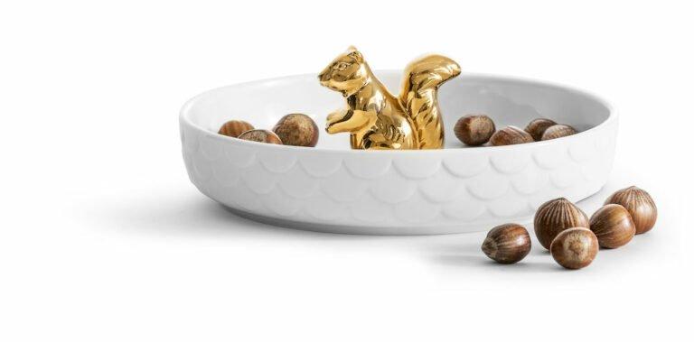 Orava tarjoiluvati pähkinöille